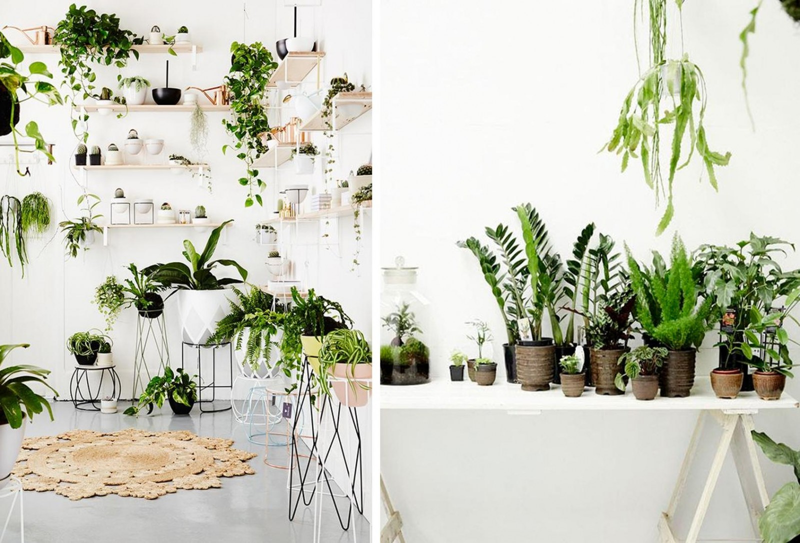 Jungle in huis interieur streept